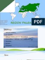 REGIÒN PALEÀRTICA