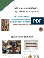 aportesdelapropagacionin-vitroalaagricultura