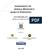 REPORT Risk Mitigation Options Indonesia