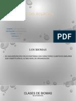 Los Biomas Del Ecuador