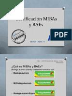 Capacitacón MIBAs y BAEs