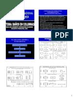 Daños en Columnas-V2