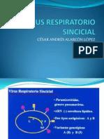 Virus Respiratorio Sincicial 2