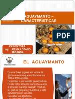 Caracteristicas Aguaymanto