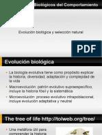 Clase 8 Selección Natural, genética y comportamiento, origen del sexo (1).pdf