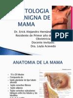 Erick Patologia Mamaria