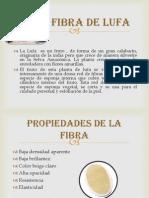 FIBRA DE LUFA.pptx