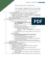 ResumenPsicopatologíaPercepciónEImaginación