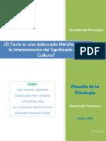 Texto Metafora Cultura (Final)