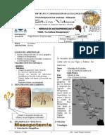Módulo Cultura Mesopotamia 1º Año