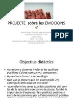 Projecte Sobre Les Emocions