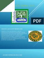 Fundación Tierra Pedro (3)