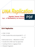 Dna Replication 2