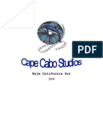CAPECABOSTUDIOSBusinessModel2008