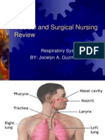 Nursing Respiratory System