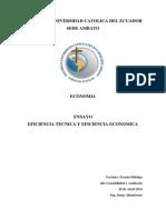 Economia Eficiencia Tecnica y Eficiencia Economica