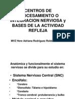 Centros de Procesamiento y Bases de Arco Reflejo Impresión