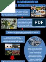 La Agroindustria y El Desarrollo Economico
