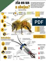 ¿Qué pasaría en un mundo sin abejas?