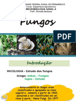 FUNGOS_2010-2