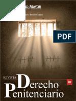 1 Revista Derecho Penitenciario (1)