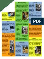 brochure-flat-side 2
