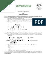 Analisis de Genealogias.pdf