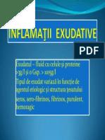 Inflamatia exudativa