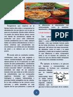 Articulo de Carbohidratos- Atole y Tamales(1)