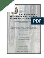 ASPECTOSCONTABLESYFISCALESDEUNAEMPRESADELSECTORHOTELEROAUNPERIODODETERMINADO