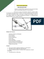 Hilo Diamantado (Reparado)