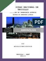 114315558-AMONOLISIS