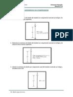 Practica 3 - Miembros en Compresion (1)