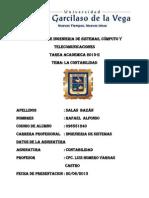 Tarea Academica Contabilidad - Rafael Salas Bazan