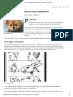 ¿Por qué nos enternecen tanto las crías de mamíferos_ - lanacion.pdf