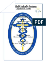 Ensayo Leucemia Fisiopatologia I