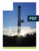 Balance y Perspectivas Del Sector Hidrocarburos