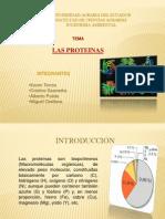 Exposición Las Proteínas.pptx