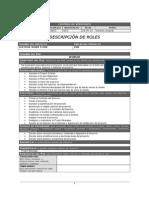 POS Descripccion de Roles v1 0