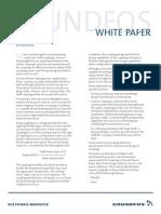 Grundfos White Paper