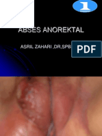 abses-anorektal