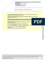 Development-Inspired Reprogramming of the Mammalian Central Nervous System