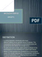 Mono Hybrid Cross