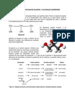 Bioquimica de La Produccion de Glicerol y Alcoholes Superiores