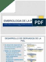 embriologia de la piel parte 2.pptx