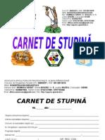 Carnet Stupina MODEL