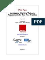 Sybase Big Data WP 3-9-11