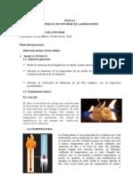 Dilatacion Termica de Los Solidos
