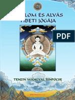 Tenzin Wangyal Rinpócse