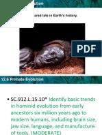 Bio_ch12-6 Rimitive Primatesndow